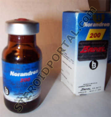 Norandren 200 Drug Profile