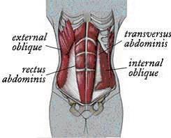 Abdominal training abs